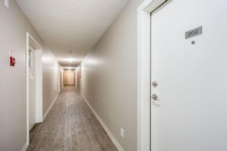 Photo 18: 202 4455C Greenview Drive NE in Calgary: Greenview Apartment for sale : MLS®# A1110677