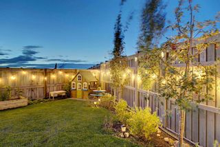 Photo 44: 123 Masters Heights SE in Calgary: Mahogany Detached for sale : MLS®# A1050411