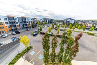 Photo 27: 413 507 ALBANY Way in Edmonton: Zone 27 Condo for sale : MLS®# E4264488