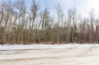 Photo 8: 4519 DONSDALE Drive in Edmonton: Zone 20 Vacant Lot for sale : MLS®# E4227514
