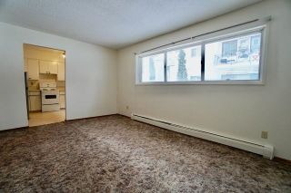 Photo 20: 10645 113 Street in Edmonton: Zone 08 Multi-Family Commercial for sale : MLS®# E4259647