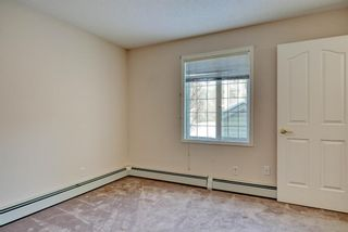 Photo 12: 3117 6818 Pinecliff Grove NE in Calgary: Pineridge Apartment for sale : MLS®# A1069420