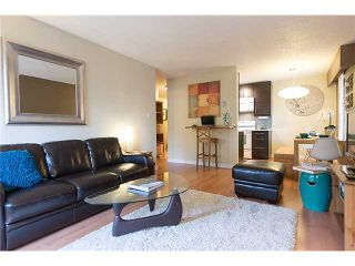 """Photo 3: 316 750 E 7TH Avenue in Vancouver: Mount Pleasant VE Condo for sale in """"DOGWOOD PLACE"""" (Vancouver East)  : MLS®# V1041888"""