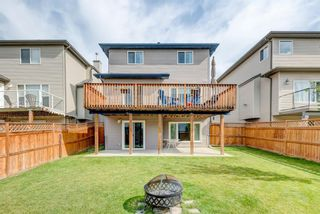 Photo 33: 17 Royal Birch Landing NW in Calgary: Royal Oak Residential for sale : MLS®# A1060735