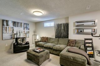 Photo 32: 16 Harley Road SW in Calgary: Haysboro Detached for sale : MLS®# A1092944
