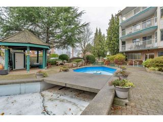 """Photo 32: 206 5360 205 Street in Langley: Langley City Condo for sale in """"PARKWAY ESTATES"""" : MLS®# R2516417"""