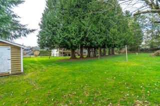 """Photo 38: 4748 238 Street in Langley: Salmon River House for sale in """"Strawberry Hills"""" : MLS®# R2549146"""