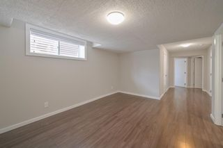 Photo 20: 162 REDSTONE Drive in Calgary: Redstone Semi Detached for sale : MLS®# A1102876