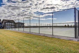Photo 44: 301 30 Mahogany Mews SE in Calgary: Mahogany Apartment for sale : MLS®# A1094376