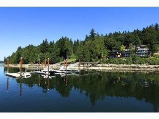 Photo 18: 3771 DOLLARTON Highway in North Vancouver: Roche Point Home for sale ()  : MLS®# V1041520