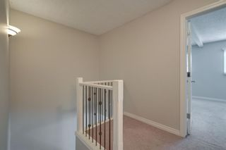 Photo 22: 2839 28 Street SW in Calgary: Killarney/Glengarry Detached for sale : MLS®# A1116843