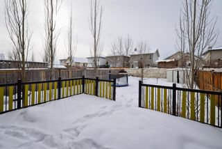 Photo 24: 2079 Bridlemeadows Manor SW in Calgary: Bridlewood Detached for sale : MLS®# A1068489