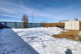 Photo 49: 260 SPRINGMERE Way: Chestermere Detached for sale : MLS®# A1073459