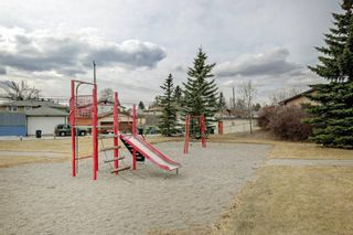 Photo 28: 3303 39 Street SE in Calgary: Dover Detached for sale : MLS®# A1084861
