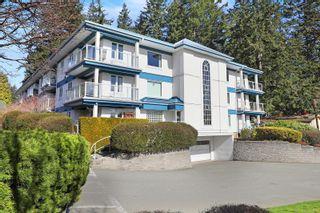 Photo 3: 308 1970 Comox Ave in : CV Comox (Town of) Condo for sale (Comox Valley)  : MLS®# 869359