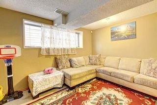 Photo 22: 25 Martinview Crescent NE in Calgary: Martindale Detached for sale : MLS®# A1107227