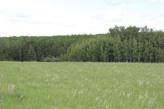 Photo 2: 198010 96th ST W: Rural Foothills County Land for sale : MLS®# C4253512