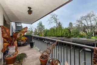 Photo 14: 302 1665 Oak Bay Ave in Victoria: Vi Rockland Condo for sale : MLS®# 862883