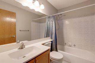 Photo 23: 112 Citadel Drive NW in Calgary: Citadel Detached for sale : MLS®# A1127647