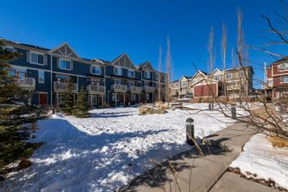 Photo 33: 59 Evansview Gardens NW in Calgary: Evanston Residential for sale : MLS®# A1071112