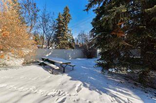 Photo 34: 8319 120 Street in Edmonton: Zone 15 House for sale : MLS®# E4231649