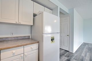 Photo 15: 22 Martin Crossing Way NE in Calgary: Martindale Detached for sale : MLS®# A1141099