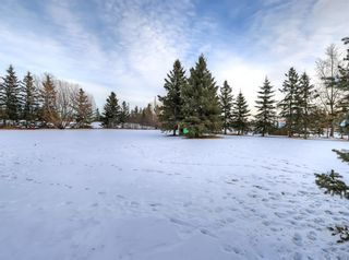 Photo 42: 263087 Range Road 293 in Rural Rocky View County: Rural Rocky View MD Detached for sale : MLS®# A1055802
