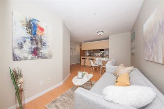 """Photo 3: 210 2891 E HASTINGS Street in Vancouver: Hastings Sunrise Condo for sale in """"PARK RENFREW"""" (Vancouver East)  : MLS®# R2510332"""