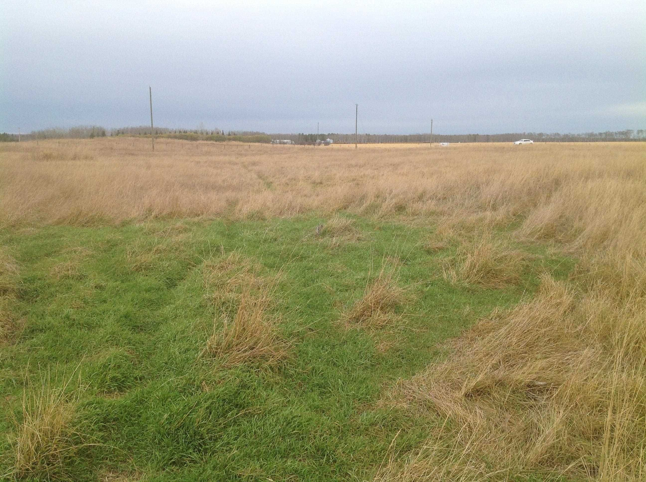 Main Photo: 4 63318 HWY 892: Rural Bonnyville M.D. Rural Land/Vacant Lot for sale : MLS®# E4265712