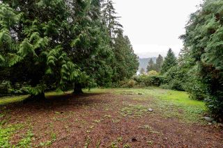 Photo 14: 3607 BEDWELL BAY Road: Belcarra House for sale (Port Moody)  : MLS®# R2405840