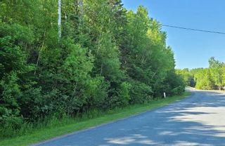 Main Photo: Lot A 85 Shortts Lake Road in Shortts Lake: 104-Truro/Bible Hill/Brookfield Vacant Land for sale (Northern Region)  : MLS®# 202115947