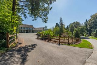 Photo 5: 9412 222 Street in Langley: Fort Langley House for sale : MLS®# R2555848