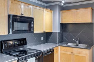 Photo 14: 202 343 4 Avenue NE in Calgary: Crescent Heights Apartment for sale : MLS®# A1118718