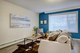 Photo 8: 2 1515 28 Avenue SW in Calgary: South Calgary Apartment for sale : MLS®# A1041285