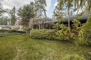 Photo 21: 19903 46A Avenue in Langley: Langley City House for sale : MLS®# R2557011
