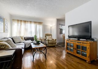 Photo 3: 387 Maitland Crescent NE in Calgary: Marlborough Park Detached for sale : MLS®# A1126572