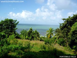Photo 1: Oceanview land for sale near Portobelo