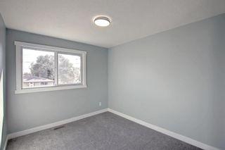 Photo 22: 3020 Dover Crescent SE in Calgary: Dover Semi Detached for sale : MLS®# A1147762