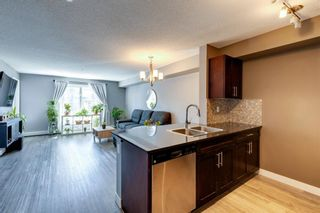 Photo 13: 4207 1317 27 Street SE in Calgary: Albert Park/Radisson Heights Apartment for sale : MLS®# A1126561