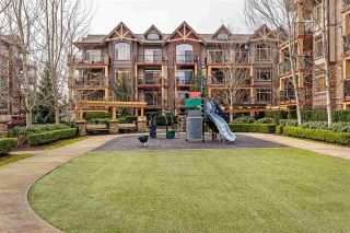 """Photo 12: 115 8328 207A Street in Langley: Willoughby Heights Condo for sale in """"YORKSON CREEK"""" : MLS®# R2550211"""
