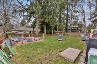 Photo 29: 12373 59 Avenue in Surrey: Panorama Ridge House for sale : MLS®# R2544610