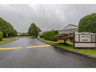 """Photo 2: 144 2844 273 Street in Langley: Aldergrove Langley Townhouse for sale in """"Chelsea Court"""" : MLS®# R2111367"""