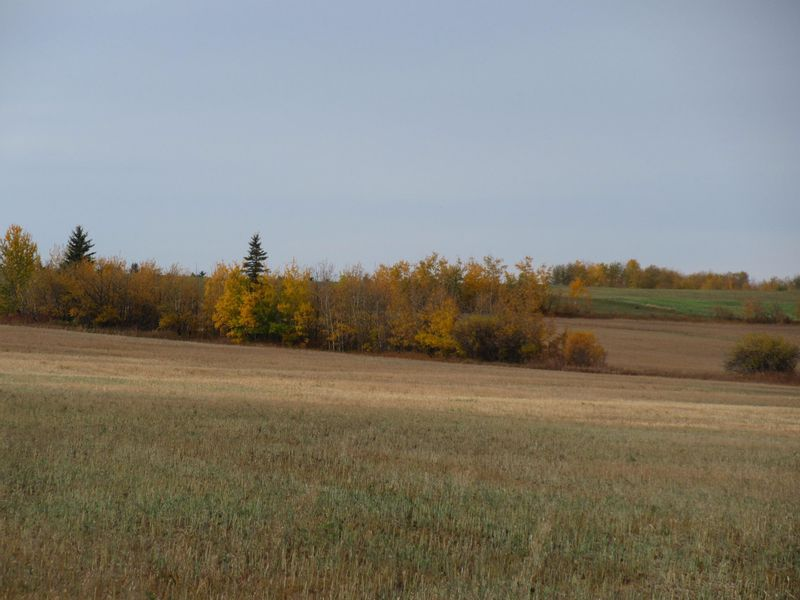 FEATURED LISTING: RR 270 North of Hwy 37 Rural Sturgeon County