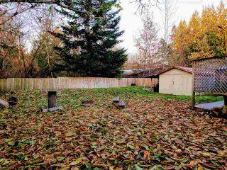 "Photo 27: 25103 DEWDNEY TRUNK Road in Maple Ridge: Websters Corners House for sale in ""WEBSTERS CORNER"" : MLS®# R2517450"