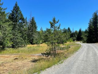 Photo 42: LOT A White Rapids Rd in : Na Extension Land for sale (Nanaimo)  : MLS®# 879885