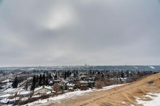Photo 29: 2543 11 Avenue NW in Calgary: St Andrews Heights Detached for sale : MLS®# A1066144