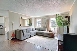 Photo 5: 159 Falton Way NE in Calgary: Falconridge Detached for sale : MLS®# A1113632
