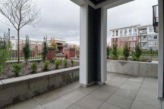"""Photo 15: 112 15137 33 Avenue in Surrey: Morgan Creek Condo for sale in """"Harvard Gardens-Prescott Commons"""" (South Surrey White Rock)  : MLS®# R2318495"""