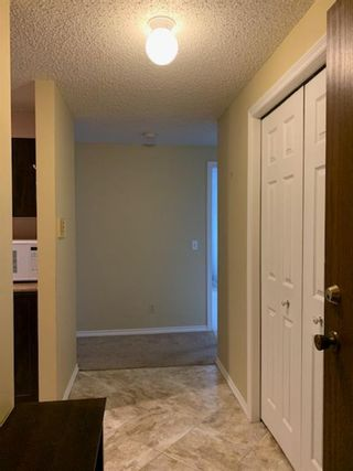 Photo 12: 206 280 Banister Drive: Okotoks Apartment for sale : MLS®# A1145640
