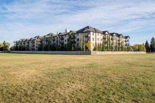 Photo 25: 101 10530 56 Avenue in Edmonton: Zone 15 Condo for sale : MLS®# E4234181